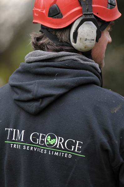 Time George Tree Services